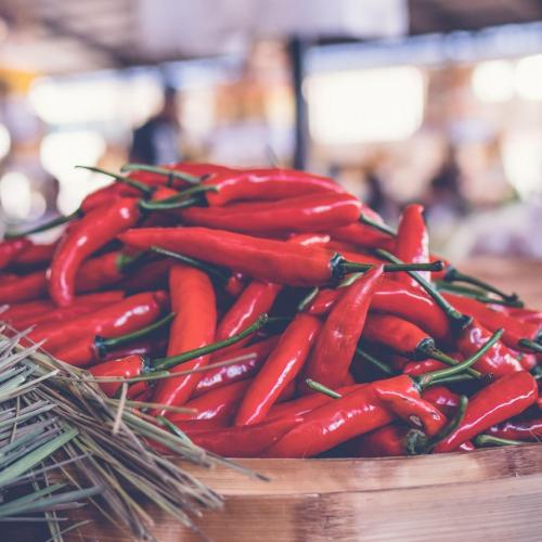 cropped-chili-lot-scaled-1.jpg